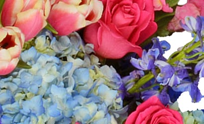 Baton Rouge Florist La Area Flower Delivery Billy Heroman S