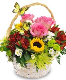 Butterfly Blooms Easter basket delivered Baton Rouge, LA