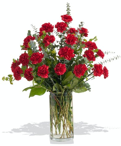 Classic Carnations vase arrangement delivered in Baton Rouge, LA.
