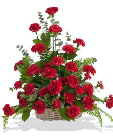 Classic Carnations floor basket delivered in Baton Rouge, LA.
