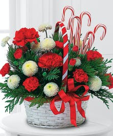 poms carnations christmas greens candy canes basket delivered baton rouge LA