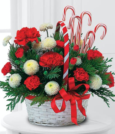 poms carnations christmas greens candy canes basket delivered baton rouge LA