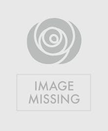 Dozen Medium Stem Roses for Valentine's Day delivered Baton Rouge LA