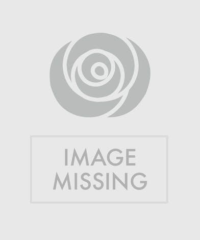 Reverent Roses casket cover delivered in Baton Rouge, LA.