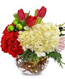 Carnations Hydrangeas Tulips Holiday Bubble Bowl Arrangement delivered Baton Rouge LA