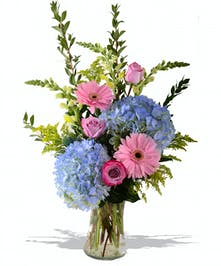 hydrangea, roses, gerberas and more