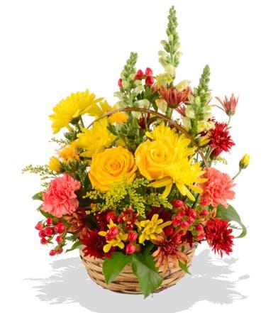Fall Sunshine Basket of Fresh Flowers delivered Baton Rouge, LA