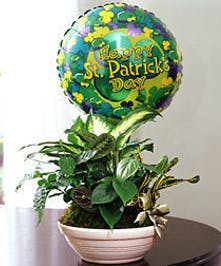 Green Garden Planter for St. Patrick's Day delivered Baton Rouge, LA