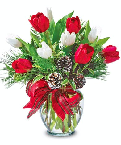 holiday red white tulip arrangement delivered Baton Rouge LA