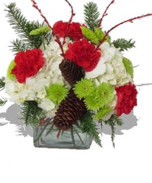 Hydrangea Carnations Poms Pinecone Holiday Cube Arrangement delivered Baton Rouge LA