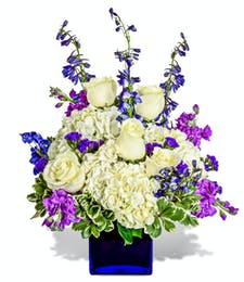 June Birthday - Violet Treasure