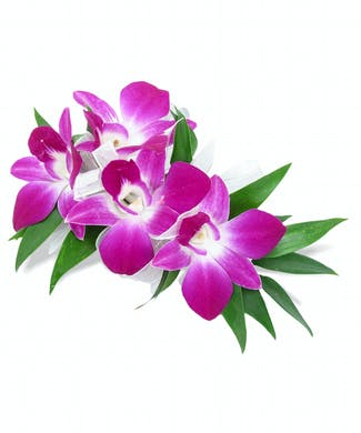 Dendrobium Purple Corsage With Wristlet