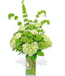 May Bday - Emerald Elegance