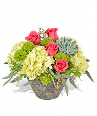 Birthday Flowers Baton Rouge LA Same Day Delivery