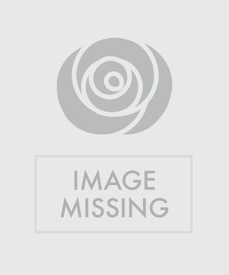 Baton Rouge Flowers