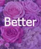 Carnation Design - Better
