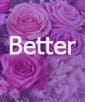Lavender Beauty- Better