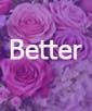 Better - 20 Stems