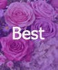 Vase Filled of Fresh Cut Daisies- BEST