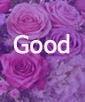 Lavender Beauty- Good