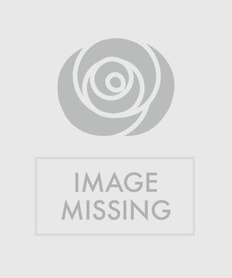Health Food Basket