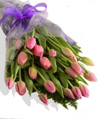 Tulips Wrapped to Go